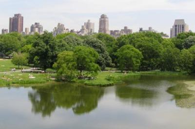 Central Park  Water & Skyline
