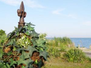 Blog topiary 1
