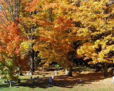 Fall Cemetry