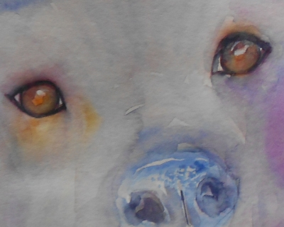 Eyes aa 2