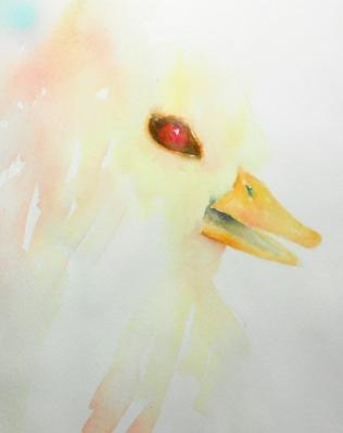 EYES duck #3 5-2013