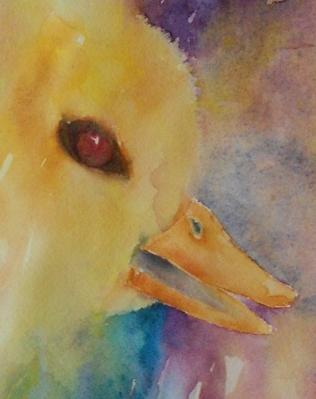 EYES duck#5 5-2013