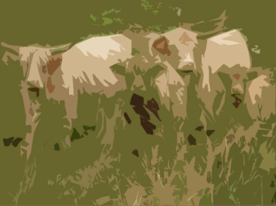 LongHorn Cattle2 cutout