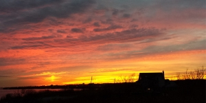 Sunset 11-25-14