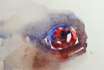 Art 1-2-2015 eye1
