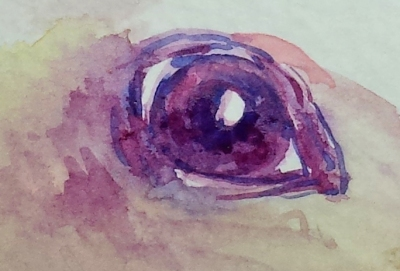 Art 1-2-2015 eye6