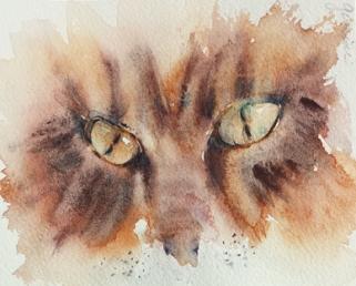 Cat Eyes2