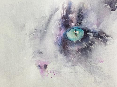 Cat Eyes4