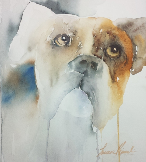 Dog_Boxer2
