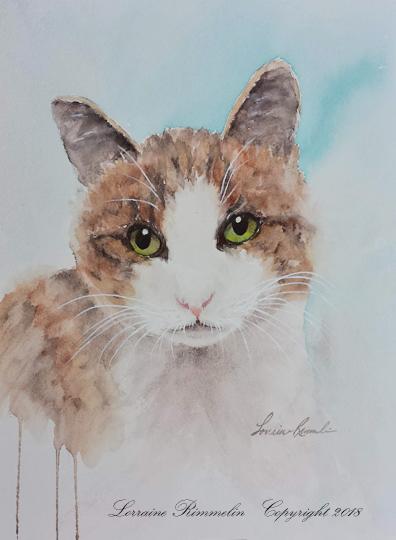 Cat Charlie 6_2018