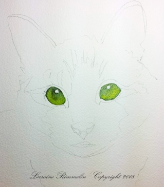 Cat Charlie3