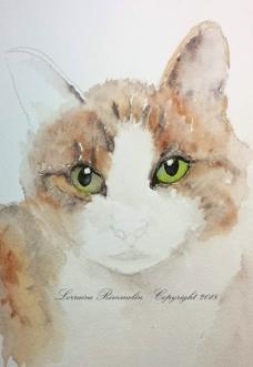 Cat Charlie4