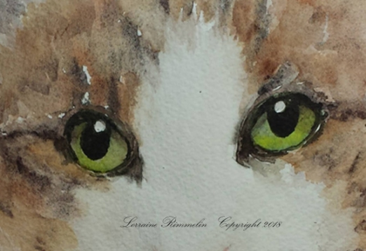 Cat Charlie5