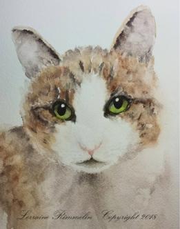 Cat Charlie6